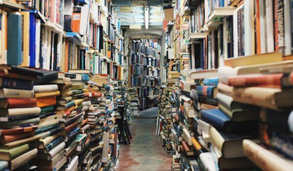 Biblioteche nelle grandi città: cosa sappiamo su Bari